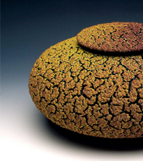 Lichen Urns by Randy O'Brien - Click Image to Close